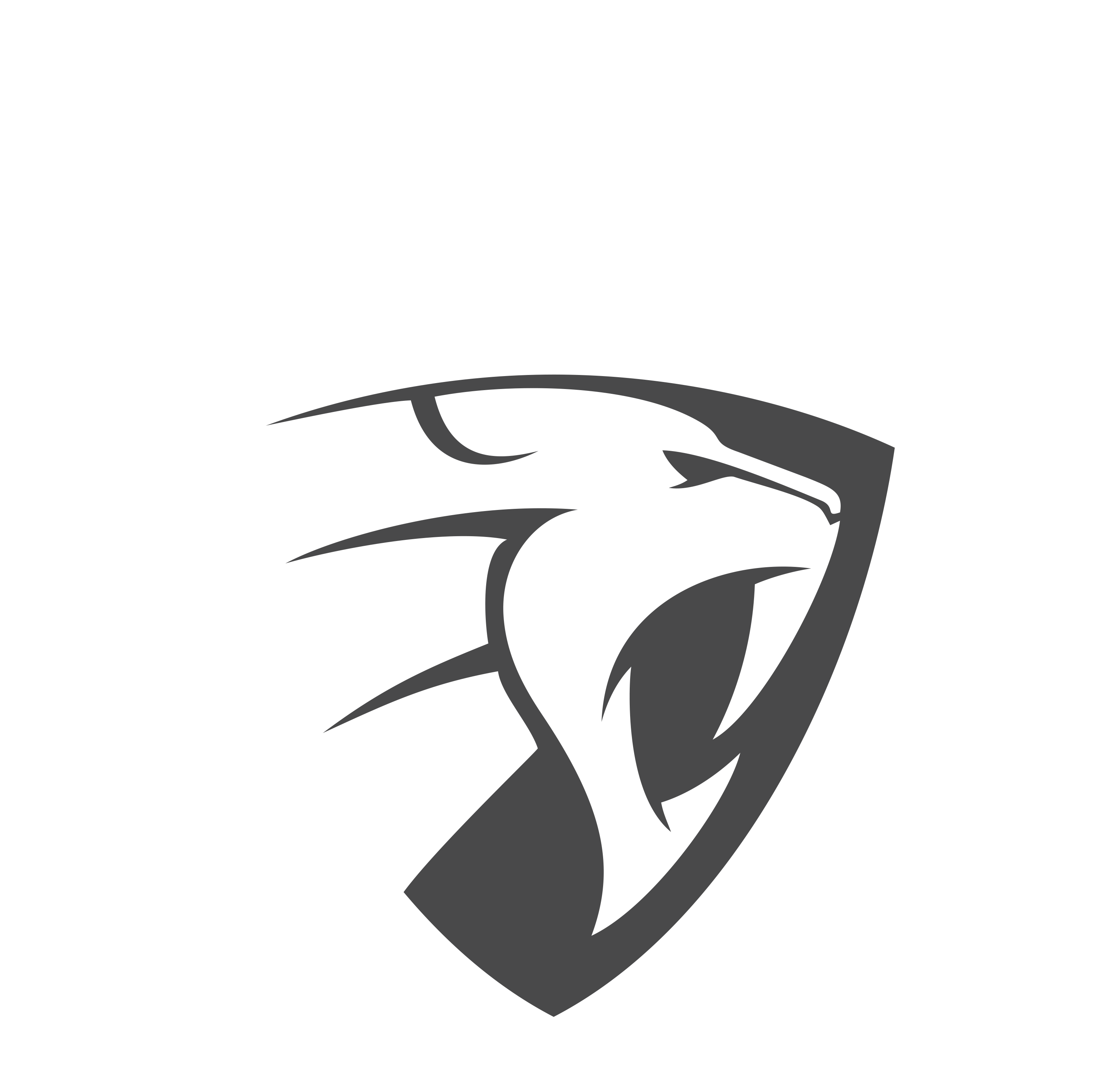 QUADPOWER IG